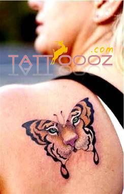 Tiger Butterfly Tattoo Designs Popular Tiger Butterfly Tat Flickr