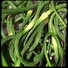 #Roasted # Potatoes & #Scapes  #Homemade #CucinaDelloZio - the scapes