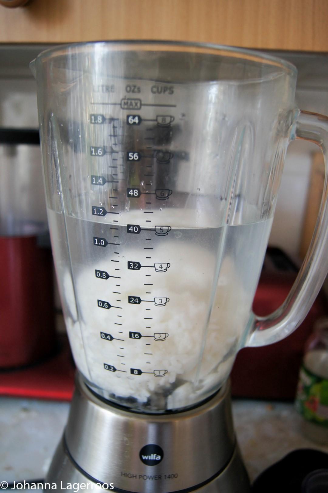 rice milk blender