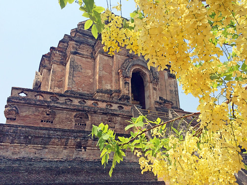 Wat Chedi Luang | by mariamjaan