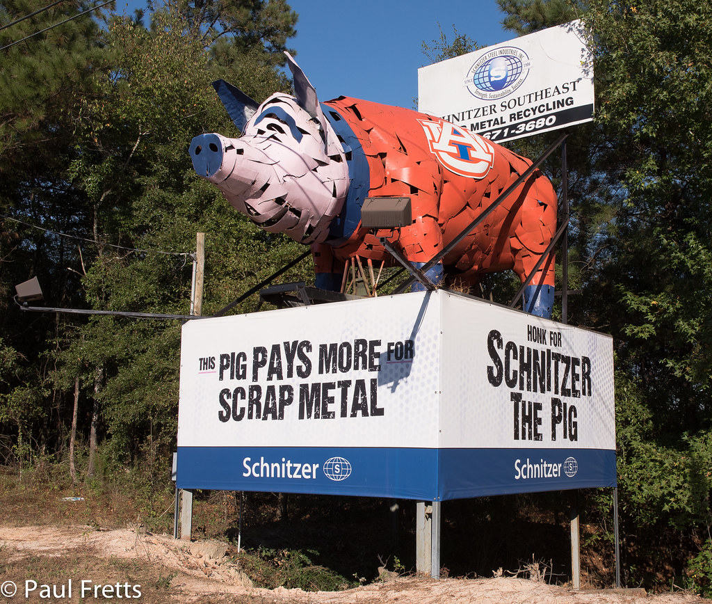 Schnitzer The Pig Located On The Ross Clark Circle In Doth Flickr - Schnitzer scrap