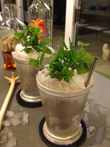 Just Another Julep (Brian Miller) with Buffalo Trace bourbon, demerara syrup, Coruba dark rum, mint | by *FrogPrincesse*