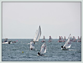Tasar sailboats in the background racing | by martian cat