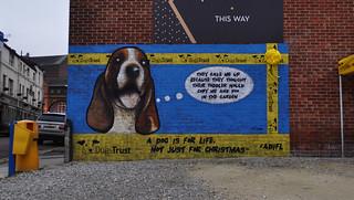 Leeds Dog Trust Open Day