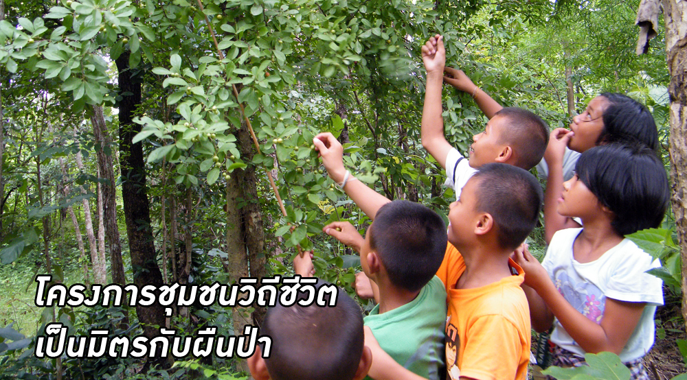 โครงการชุมชนวิถีชีวิตเป็นมิตรกับผืนป่า