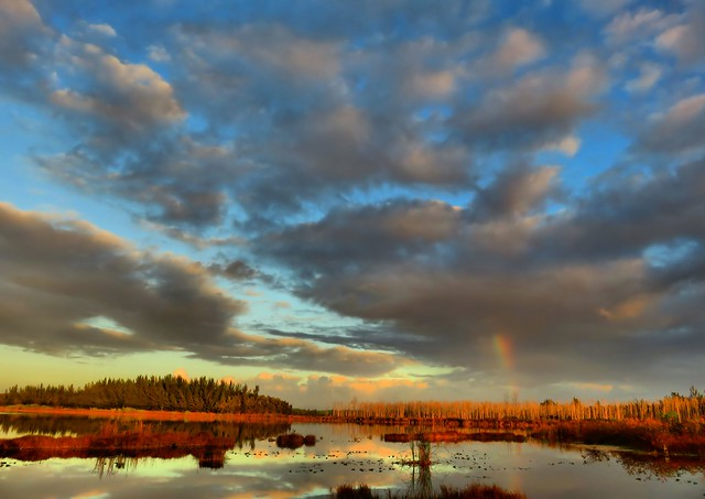 Rainbow HDR COREL 20150105
