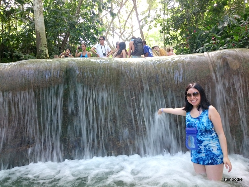 Dunn's River Falls Waterfall