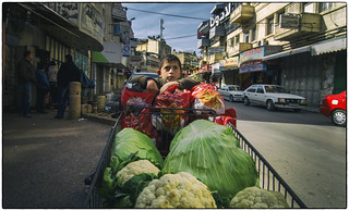 Nablus-Selling Califlower | by HofmanPhotos