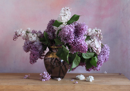 Happiness is a lilac happiness is a lilac vibrant but - Nature morte a imprimer ...