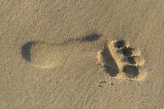 Sand foot | by nikphot