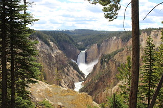 Yellowstone 2016 | by kerryhale