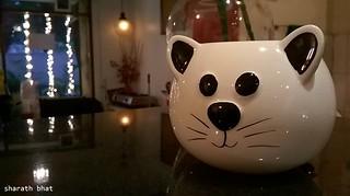 Cat_Mug+600