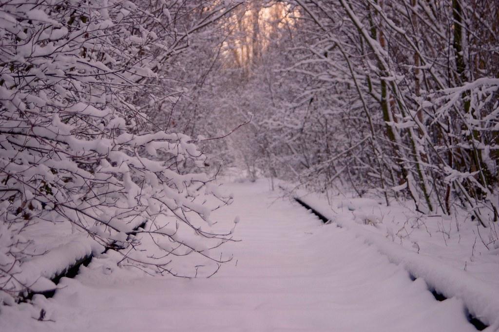 descriptive essay-winter scene