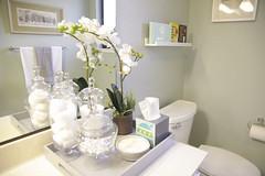 Bathroom Countertop Decor My Web Value