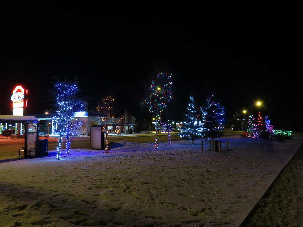 Christmas lights at Shipyards Park in Whitehorse, Yukon, C… | Flickr