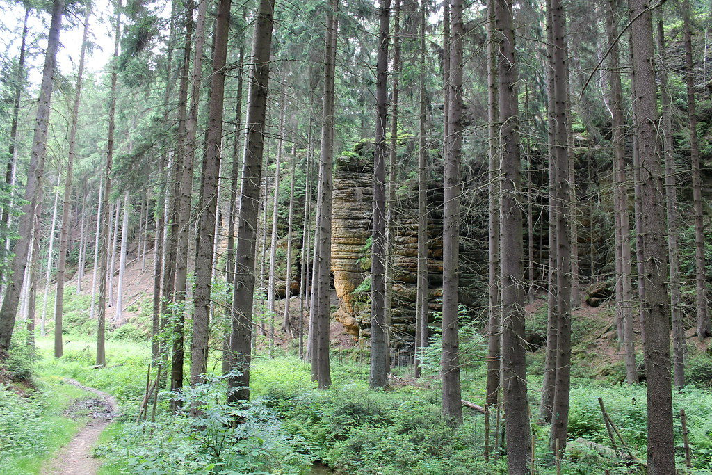 sandstone pillars along the Čertova rokle trail