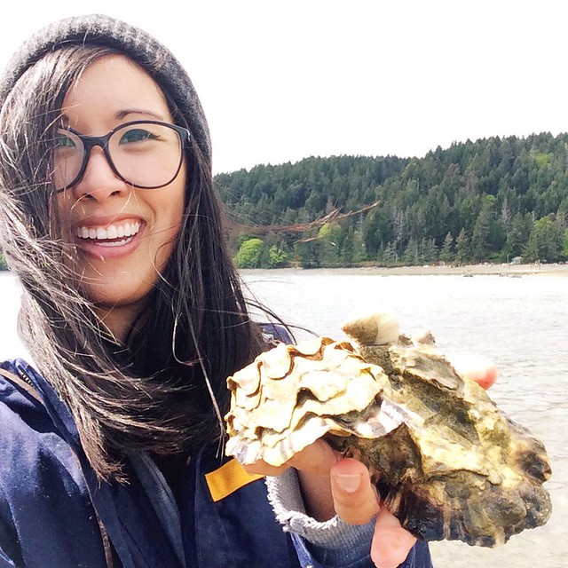 hama hama oyster farm