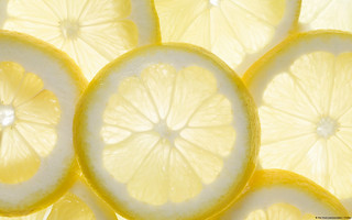 Several lemon slices, backlit | by Michael Stern