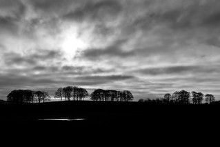 winter silhouette | temple newsam | by John FotoHouse
