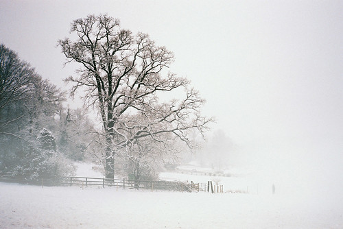Landscape with Snow and Fog | by The Nick Page