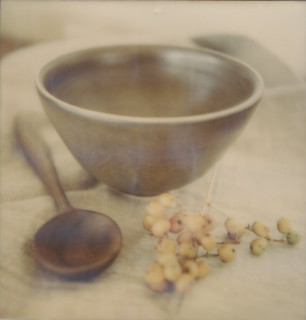 94/100 Bowl and Spoon | by Triana T.