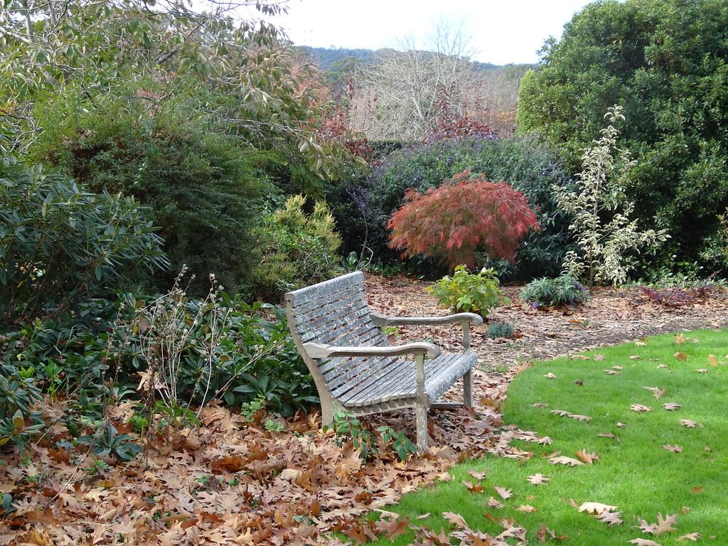 Peppers Craigieburn Resort Gardens In Autumn. Garden Seat And Japanese  Maple. |