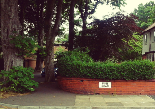 A House in Didsbury 3 | by sarahcoggrave