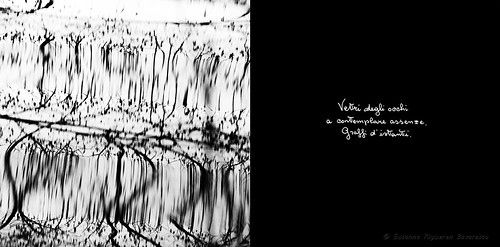 Calligrafie d'Anima (3)