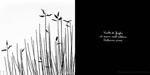 Calligrafie d'Anima (13)