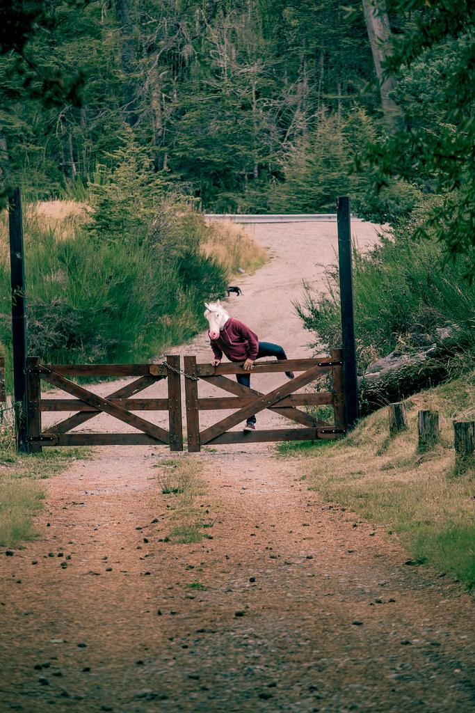 Un unicornio en Patagonia