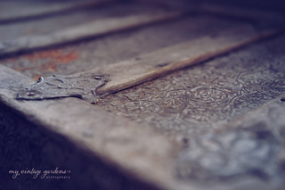 ~ my great- great grandpa's trunk. | by denisemasygaphotography