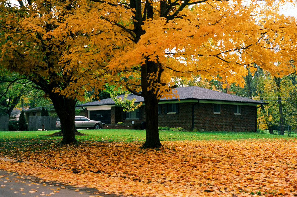 Neighbor's house under the yellow canopy
