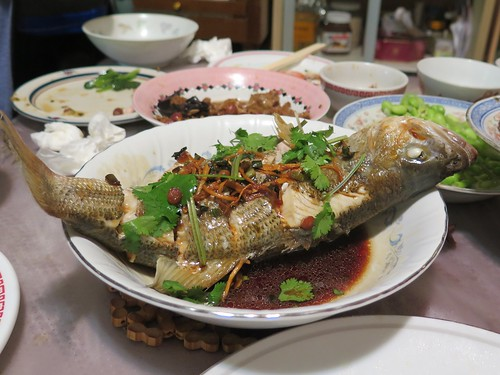 Christmas Eve Dinner 2014 -- Steamed whole catfish | by Gary Soup