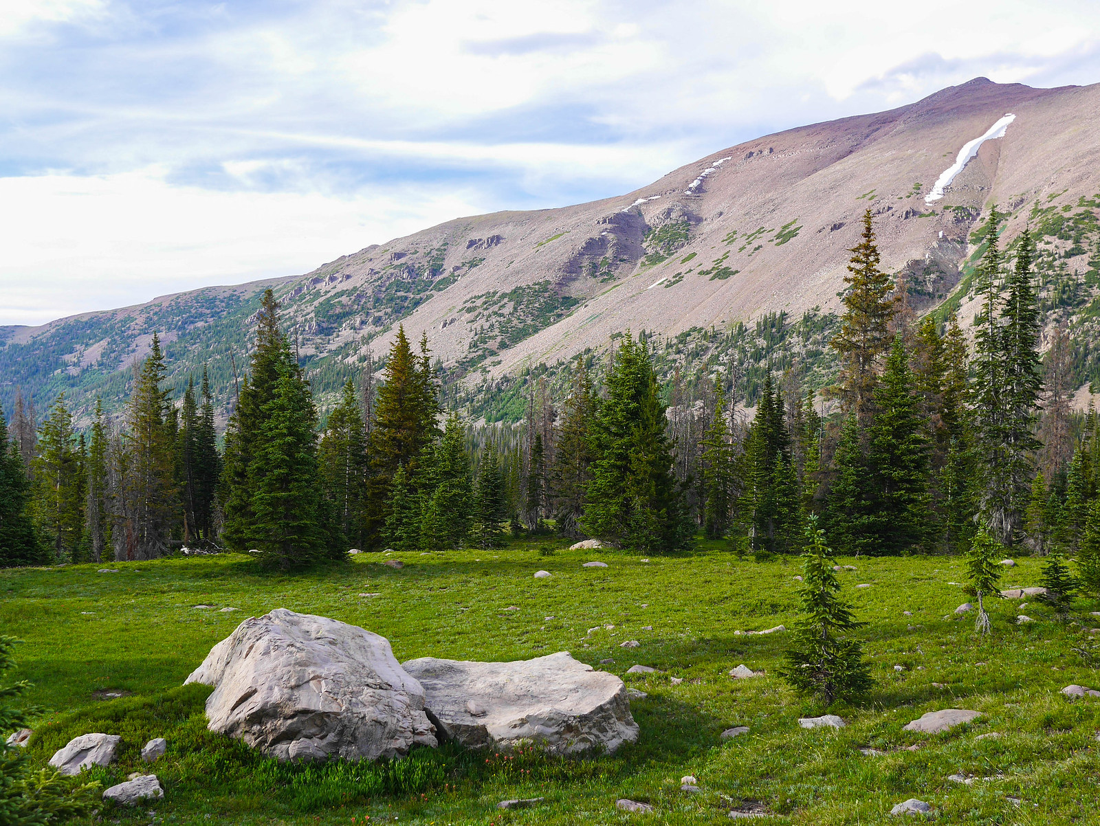 Meadows near Amethyst Lake