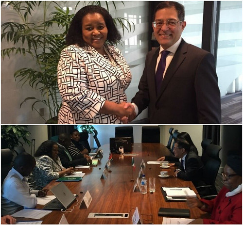 El Embajador de México en Sudáfrica se reúne con la Ministra de Medio Ambiente