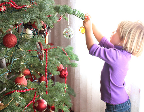 decorating the tree | by Farm Fresh To You -