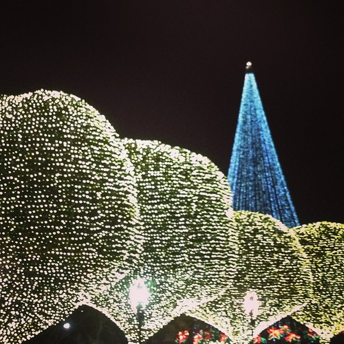 Last Night I Finally Made It Out To The Opryland Hotel To