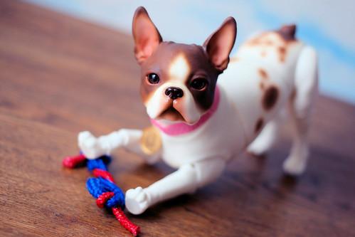 Winnie's New Toy