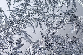 Window Frost | by NightSkyMN