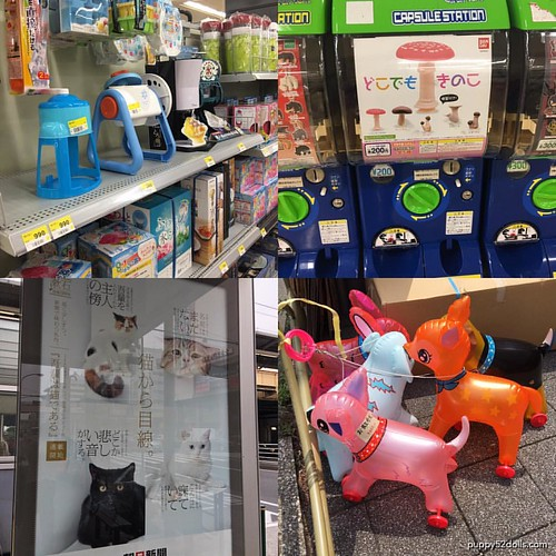Last hours in Japan, top left: daiso, random gashapon - scored my top two choices! Woot! Cat sighting at a bus stop? Blow up animals with wheels for feet :3 #japan #東京 #日本 #楽しかった | by puppy52