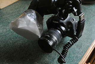 Playing with a Meike MK-C-UP multifunctional extension tube withg the canon 18-55mm kit lens #2 | by Lord V