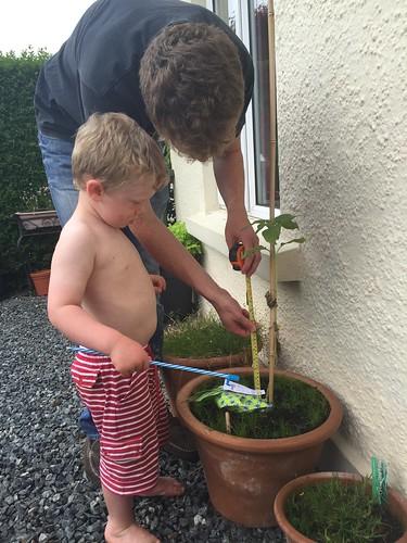 The Naked Gardener