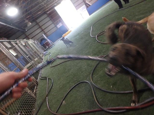 05/24/16 Hula Hoop Play :D!