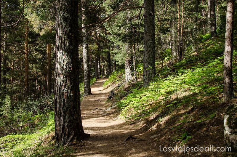 ruta de la Barranca en un fin de semana en la sierra de Madrid