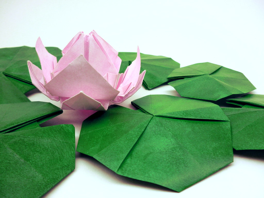 Origami water lily original design flower from single unc flickr origami water lily by leafpieceb origami water lily by leafpieceb izmirmasajfo