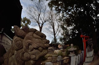 """Komainu"" of Hitsuji Shinto Shrine 2014/12. 