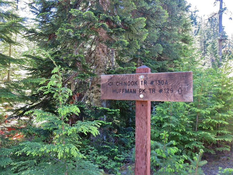 Huffman Peak Trail junction with the Chinook Trail