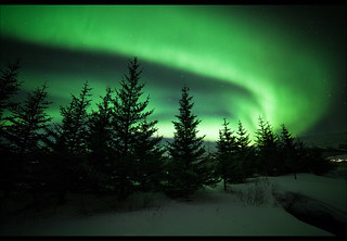 Galvanizing Northern Lights | by Diana Michaels