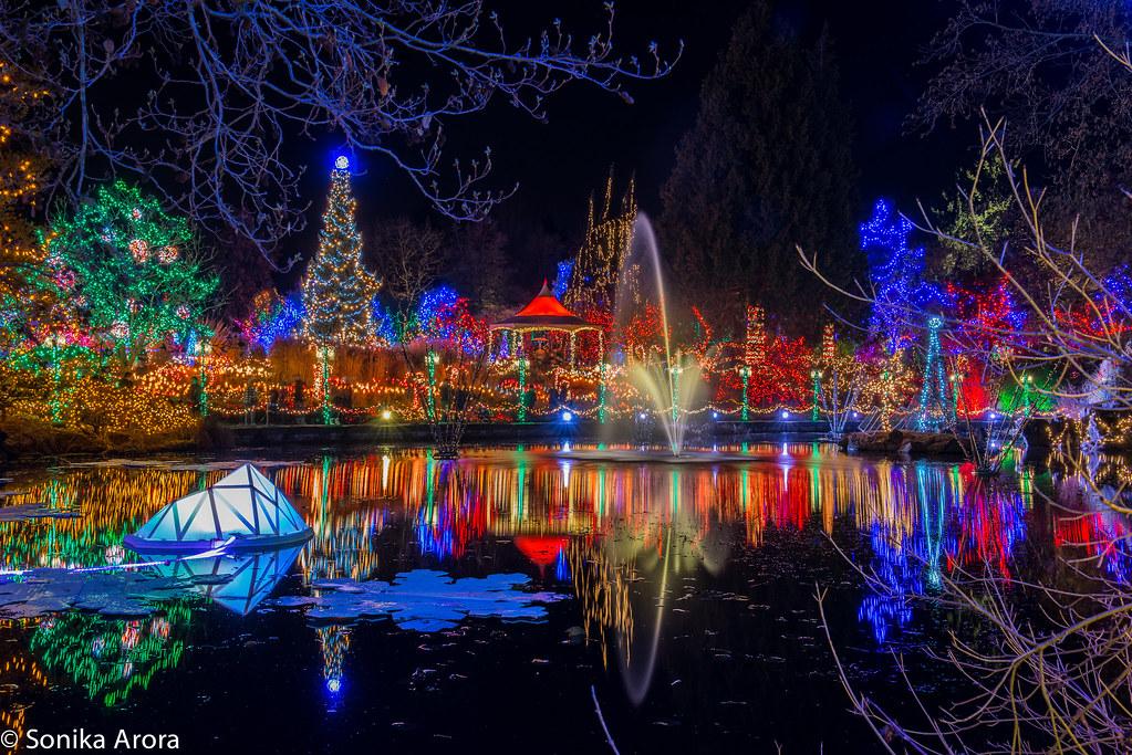 Festival of Lights at VanDusen Botanical Gardens. Over 1 million lights! :)  | - Festival Of Lights At VanDusen Botanical Gardens. Over 1 M… Flickr