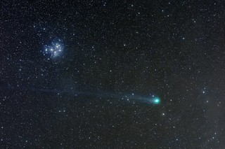 C/2014 Q2 Lovejoy passing the Pleiades | by SoggyAstro